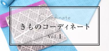 きものコーディネート vol.1