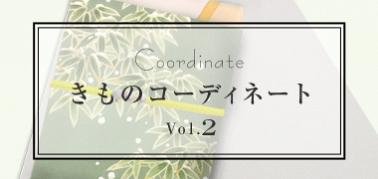 きものコーディネート vol.2