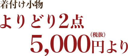 たとえば…美容ランジェリー 5,800円(税抜)