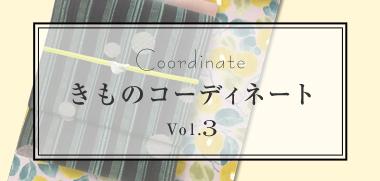 きものコーディネート Vol.3